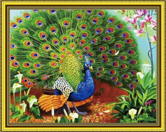 Алмазная мозаика 40x50 Павлин на полянке среди цветов